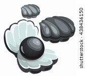 black shell with pearl isolated ... | Shutterstock .eps vector #438436150
