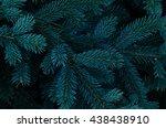 tree texture | Shutterstock . vector #438438910