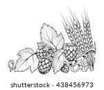stylish hop branch and barley...   Shutterstock .eps vector #438456973