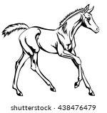 galloping little foal | Shutterstock .eps vector #438476479