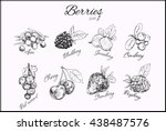 berries collection. sacred... | Shutterstock .eps vector #438487576