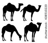 camel silhouette isolated | Shutterstock .eps vector #438510220