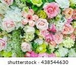 beautiful colorful rose   Shutterstock . vector #438544630