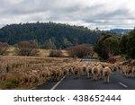 australian outback life. heard... | Shutterstock . vector #438652444