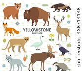 Stock vector vector illustration of yellowstone national park animals moose elk bear wolf fox bison 438714148