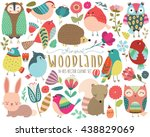 Stock vector woodland animals and whimsical design elements vector 438829069
