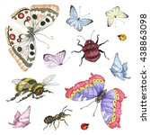 watercolor set of insects | Shutterstock . vector #438863098