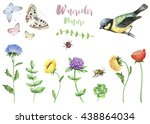 watercolor set of nature... | Shutterstock . vector #438864034
