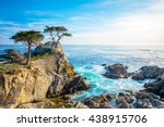 The Lone Cypress  Seen From Th...