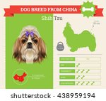 Vector Info Graphic Of Shih Tz...