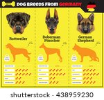 dogs breed vector info graphics ... | Shutterstock .eps vector #438959230