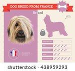 vector info graphic of briard...   Shutterstock .eps vector #438959293