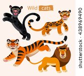 Vector Set Of Wild Cats....