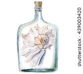 Watercolor Sea Shells.  It Can...