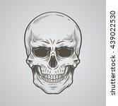 skull | Shutterstock .eps vector #439022530