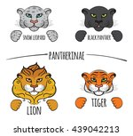 big cats. snow leopard  black... | Shutterstock .eps vector #439042213