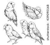 set of cute funny lovebird...   Shutterstock .eps vector #439090168