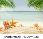 shells on beach  blur sea on... | Shutterstock . vector #439094230