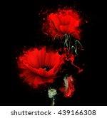 Three Red Poppy On A Black...
