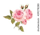 branch of roses | Shutterstock .eps vector #439278280