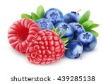 Isolated Fruits. Wild Berries ...