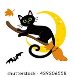 Cute Black Cat Flying On A...