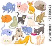 cat icons set  cartoon style | Shutterstock . vector #439306636
