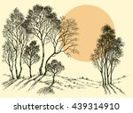 sunset in the forest. trees... | Shutterstock .eps vector #439314910