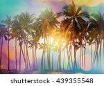 serenity tropical beach ...   Shutterstock . vector #439355548