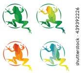 Set Of Modern Vector Frog...