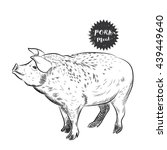 pork sketch | Shutterstock .eps vector #439449640