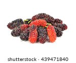 mulberry isolated on the white...   Shutterstock . vector #439471840