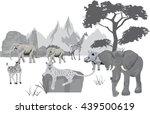 african landscape animals   Shutterstock .eps vector #439500619