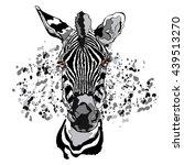 animal. zebra. close up.... | Shutterstock .eps vector #439513270