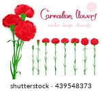 vector set isolated of flowers... | Shutterstock .eps vector #439548373