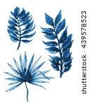 blue monochrome tropical exotic ... | Shutterstock . vector #439578523