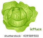 vector illustration of a fresh... | Shutterstock .eps vector #439589503