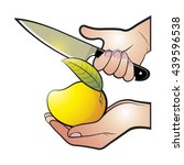 hands cutting ripe mango vector ... | Shutterstock .eps vector #439596538