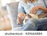 Woman With Kitten On Lap
