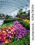 singapore   may 4   flower dome ...   Shutterstock . vector #439678594