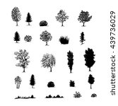 hand drawn sketch of trees ... | Shutterstock .eps vector #439736029