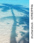 palm shadow on blue shallow... | Shutterstock . vector #439839946