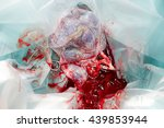 Small photo of placenta afterbirth with umbilical cord