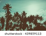 palm trees on tropical beach ... | Shutterstock . vector #439859113