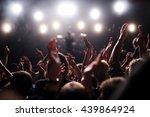 festival crowd raising their