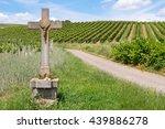 Wayside Cross In The Vineyard ...