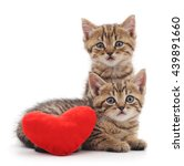 Stock photo kittens with toy heart isolated on a white background 439891660