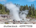 Steaming Geyser In Yellowstone...