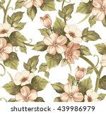 flowers of apple. drawing ... | Shutterstock .eps vector #439986979