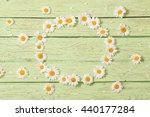 chamomile flower over blue...   Shutterstock . vector #440177284